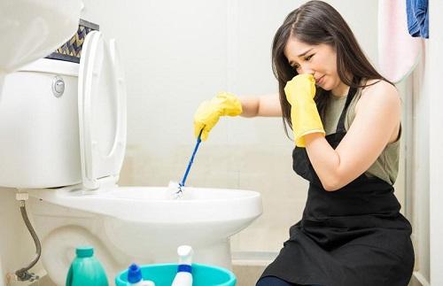 Nguyên nhân nào gây ra mùi hôi trong nhà vệ sinh